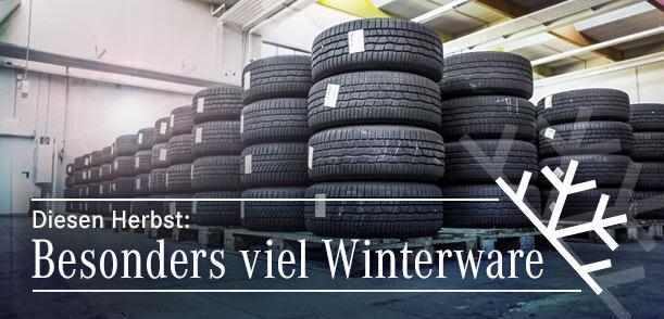 Winterware